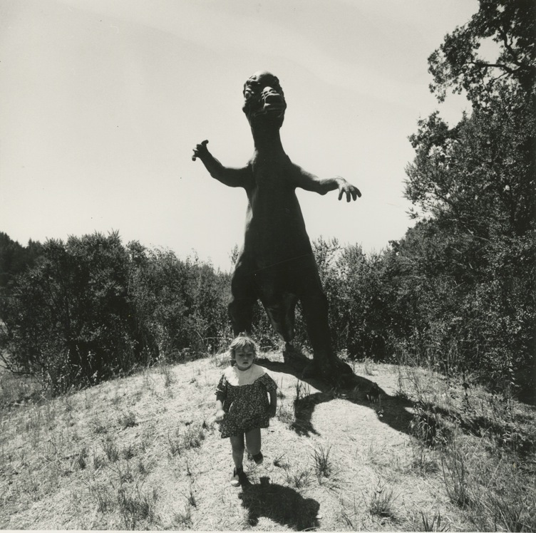 nightmare-photo-by-arthur-tress-dream-collector